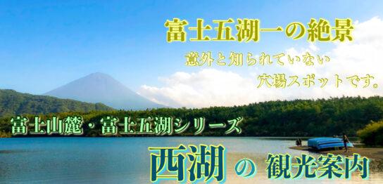 西湖のサムネ_富士五湖一の風景