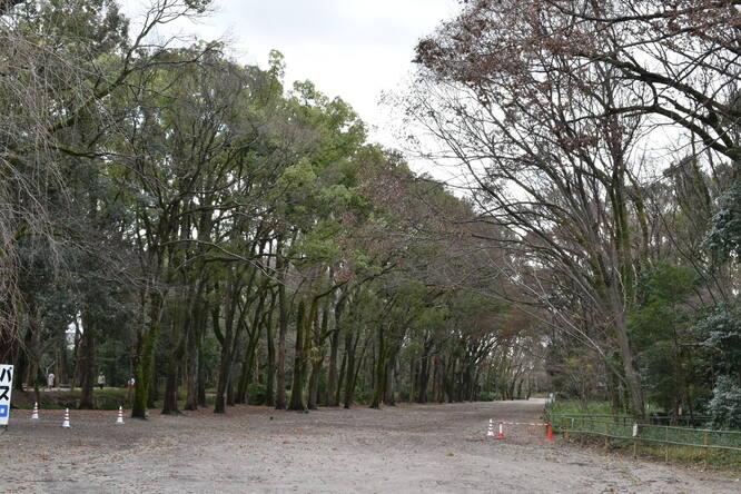 下鴨神社・糺の森と流鏑馬の馬場