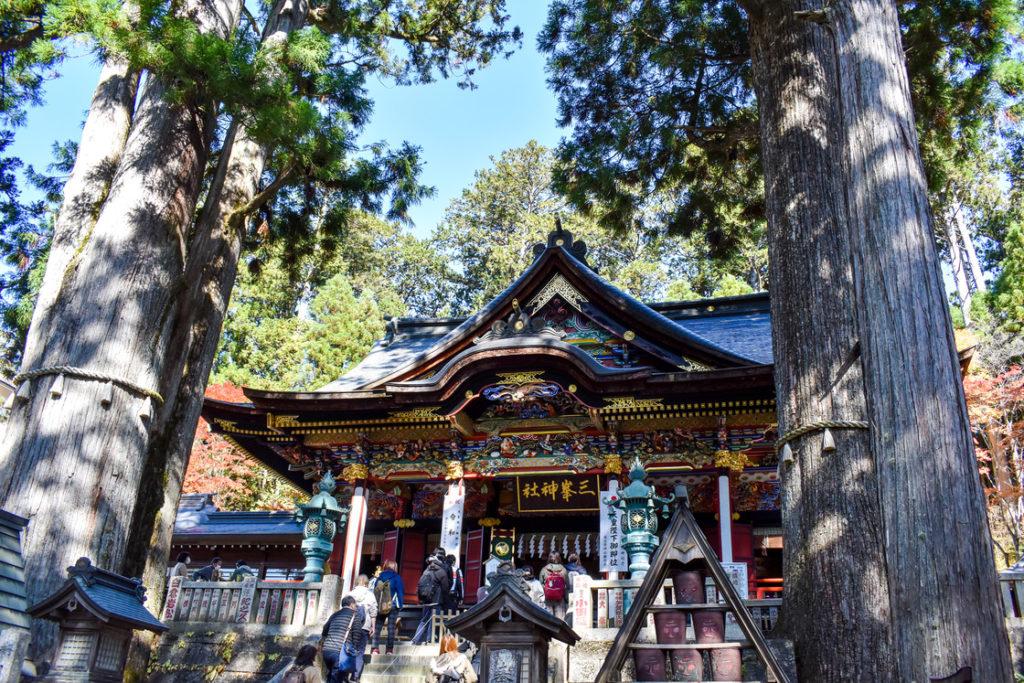 三峯神社_拝殿と御神木
