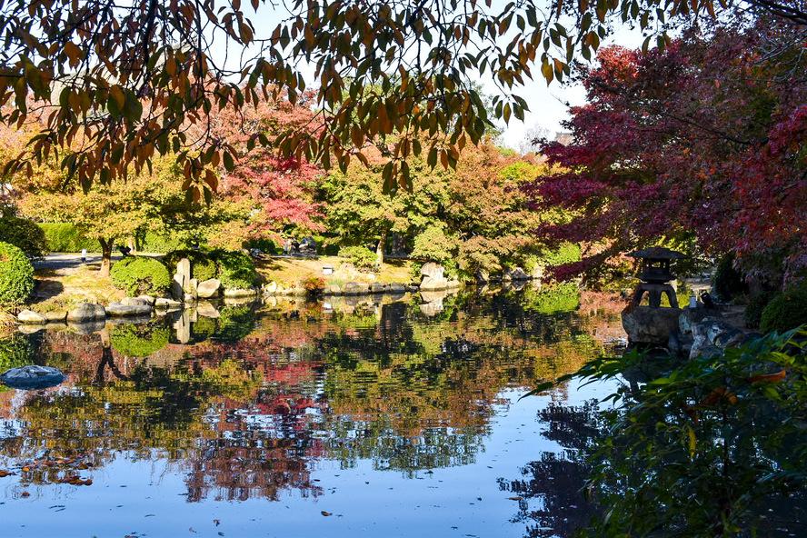 東寺_庭園と紅葉