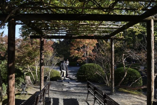 紅葉の東大寺_朝日と庭園