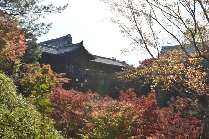 東福寺_通天橋と紅葉散策