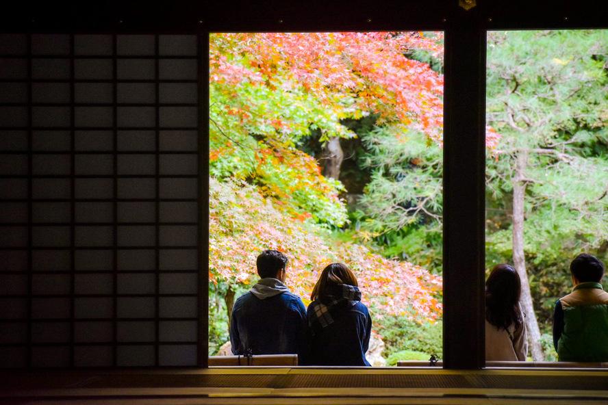 南禅院のフォトスポット_書院と紅葉