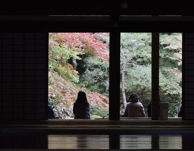 南禅院_書院と紅葉