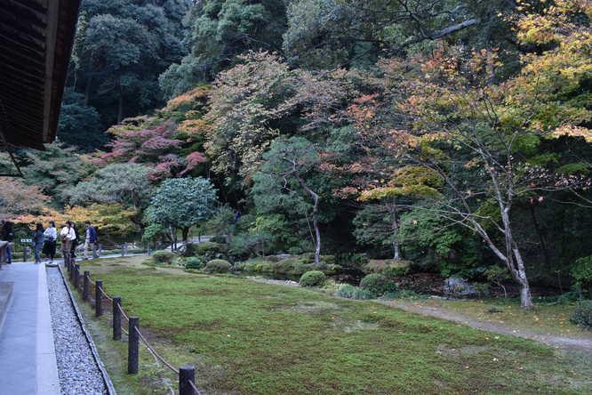 南禅院_紅葉の庭園