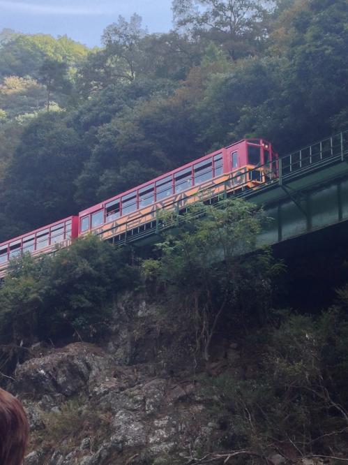 保津川下りから見るトロッコ列車