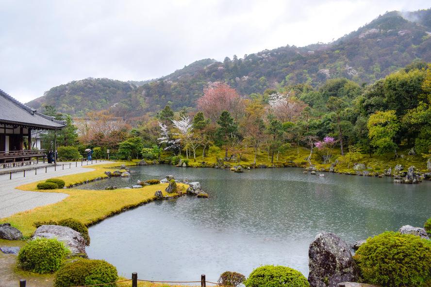 京都・嵐山_天龍寺の春の曹源池庭園