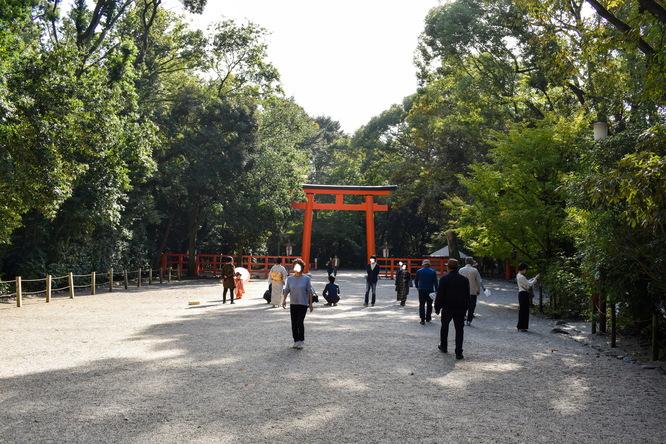 下鴨神社・南口鳥居と糺の森