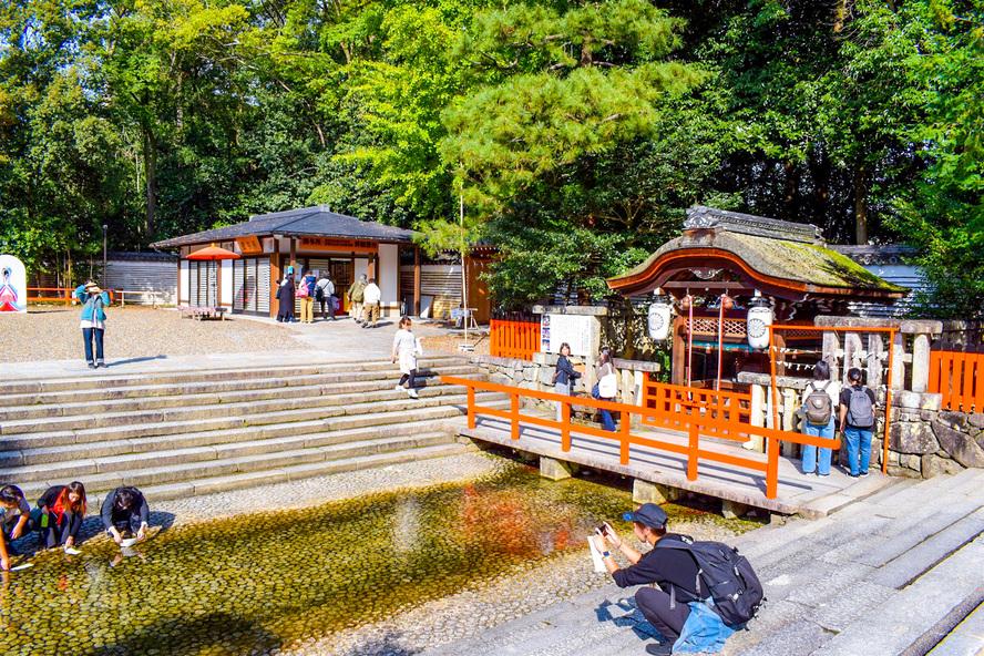 下鴨神社・御手洗池と水占い