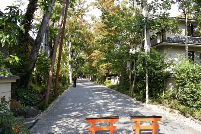 下鴨神社_糺の森へ