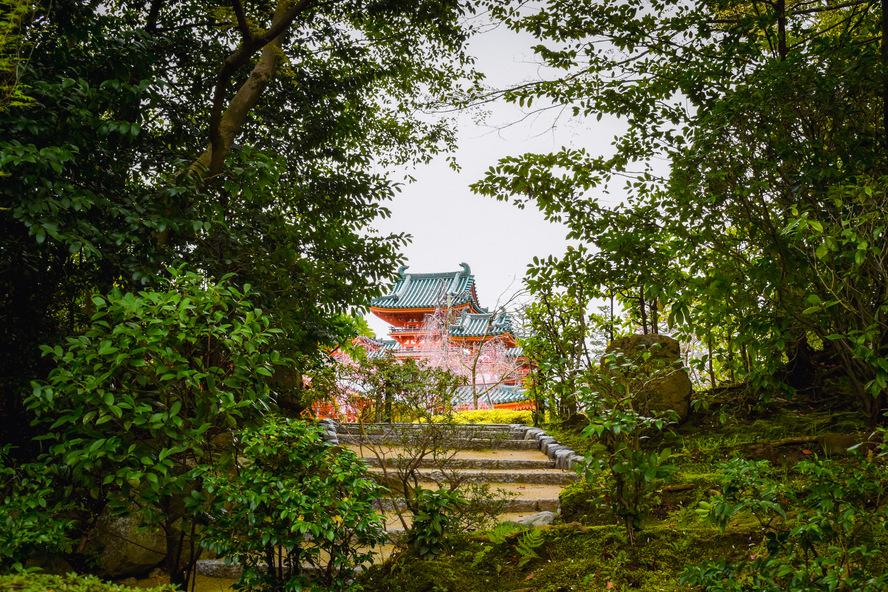 平安神宮神苑から眺める社殿