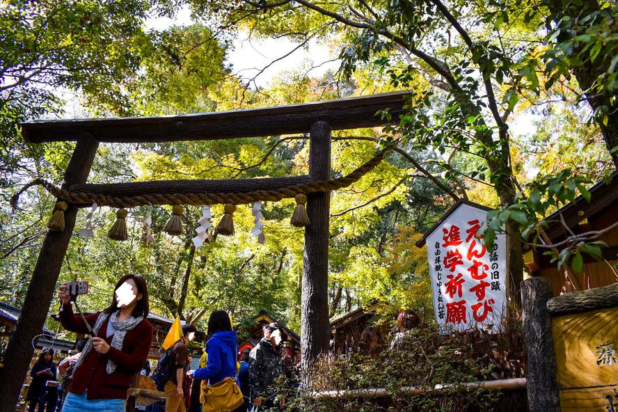 野宮神社の歴史_黒木鳥居と境内