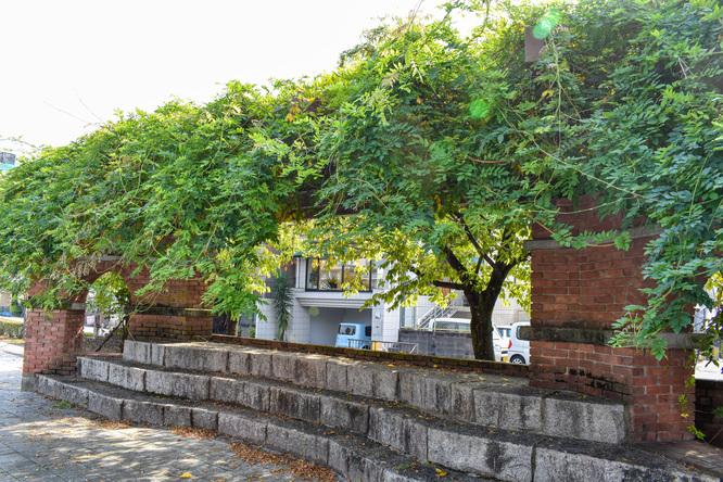 鴨川_古都・京都の自然と岡崎疏水