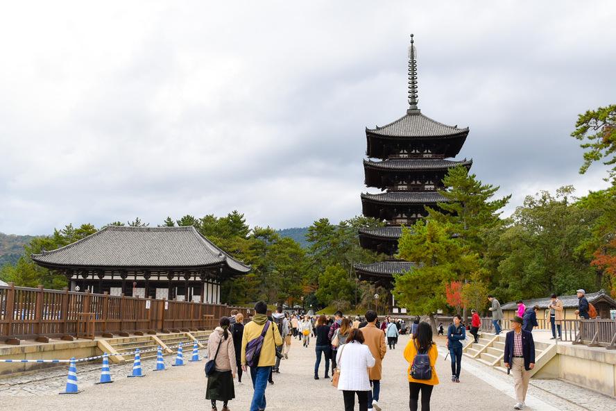 興福寺の見どころ_五重塔と東金堂