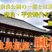 興福寺 サムネ