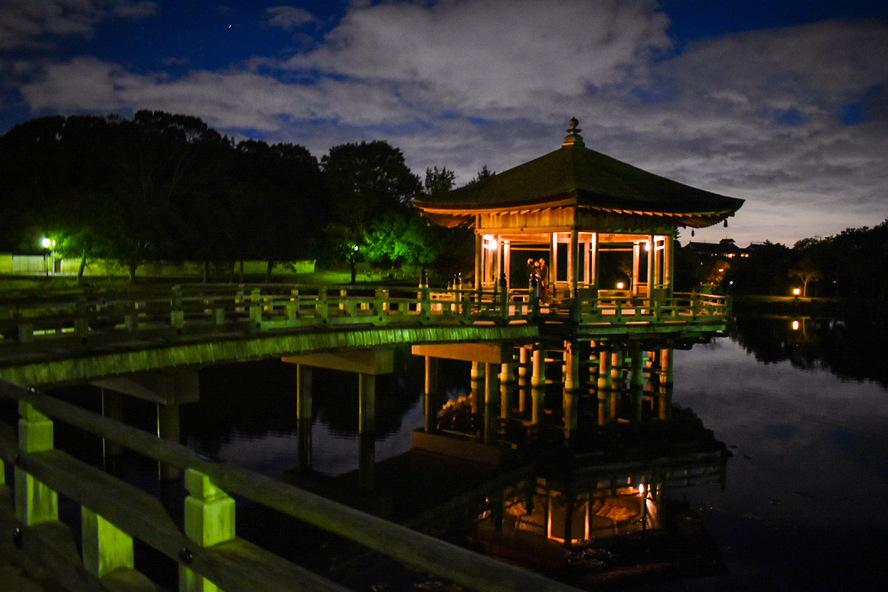 奈良公園の見どころ_夜の浮見堂