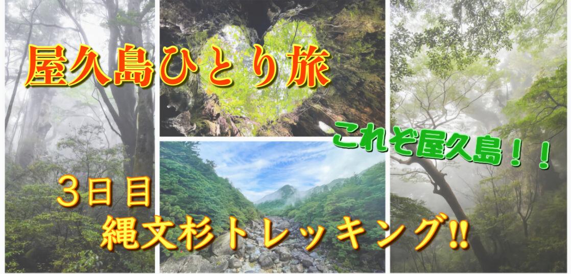 屋久島ひとり旅3日目_縄文杉トレッキング_サムネ改