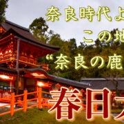 春日大社_奈良公園 サムネ