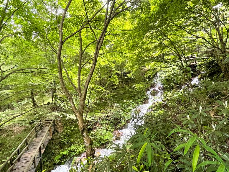 付知峡_岐阜の自然観光