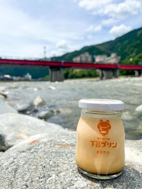 下呂温泉_温泉街と飛騨川と下呂プリン