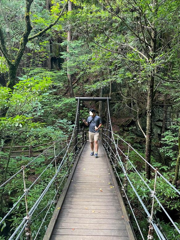 付知峡_岐阜の自然観光_吊り橋