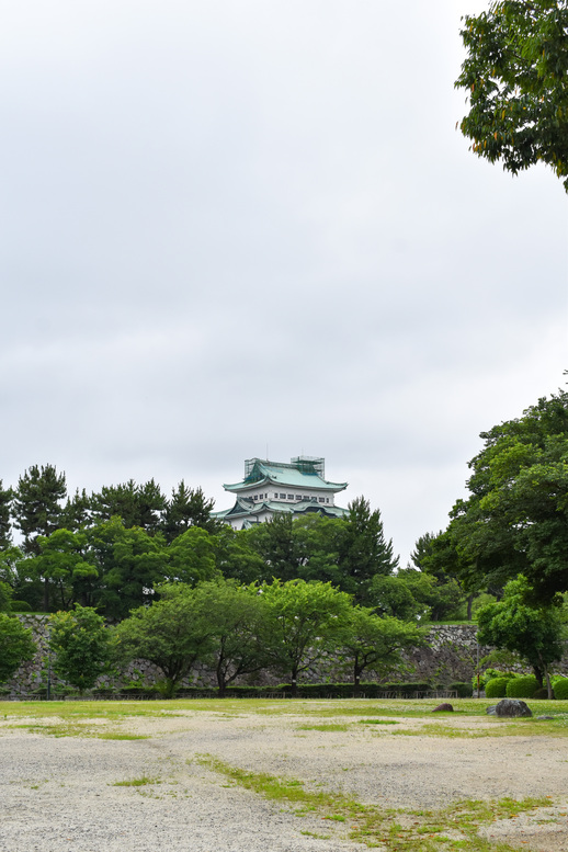 城下から眺める名古屋城