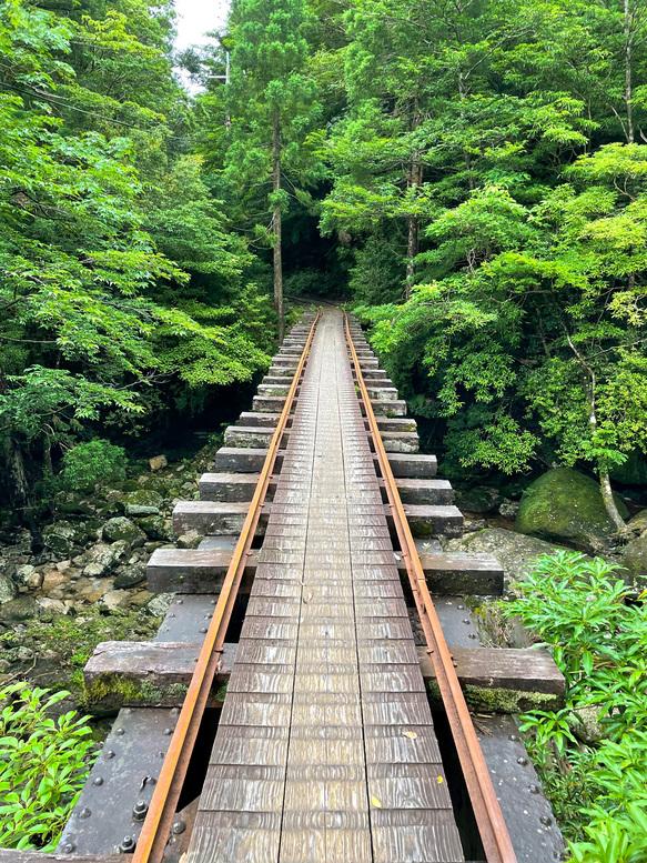 屋久島観光_縄文杉トレッキング_トロッコ道と橋