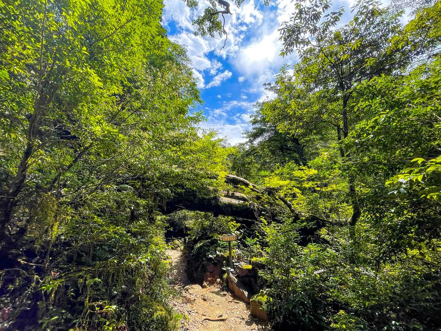 白谷雲水峡へのアクセス