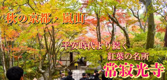 常寂光寺_秋の京都・嵐山観光