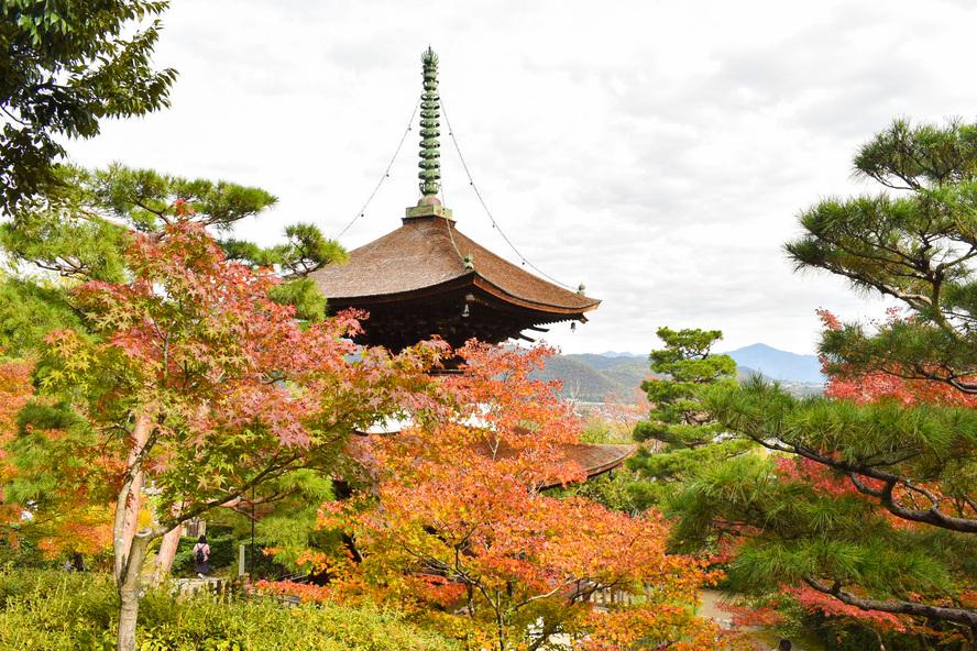 常寂光寺_多宝塔と紅葉_秋の京都・嵐山