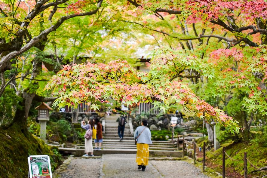 常寂光寺_山門_秋の京都・嵐山