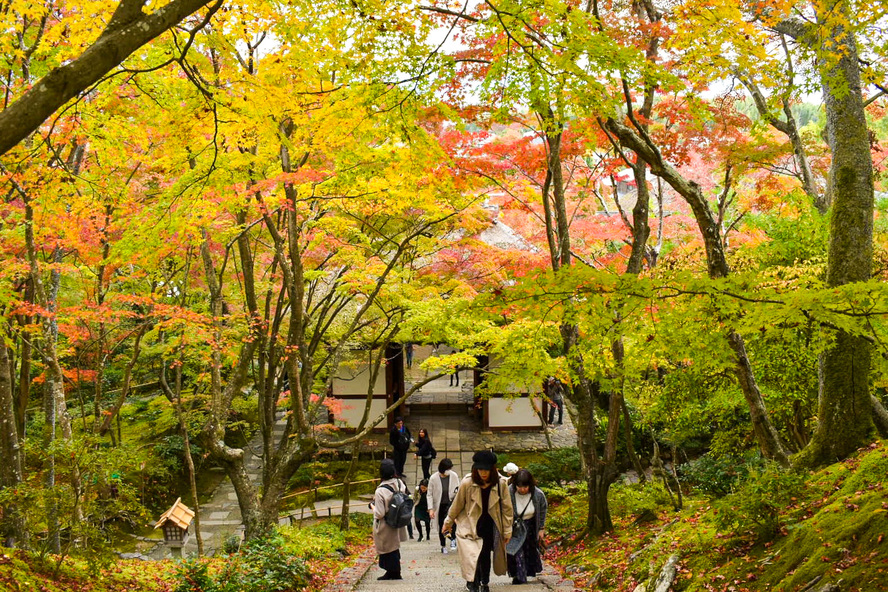 常寂光寺_紅葉と仁王門_秋の京都・嵐山