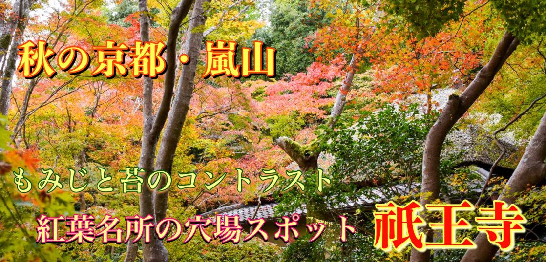 祇王寺_秋の京都・嵐山_紅葉の名所