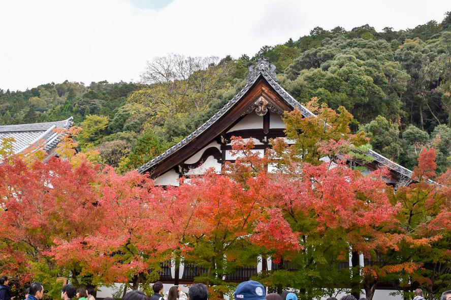 永観堂の歴史_禅林寺のはじまり