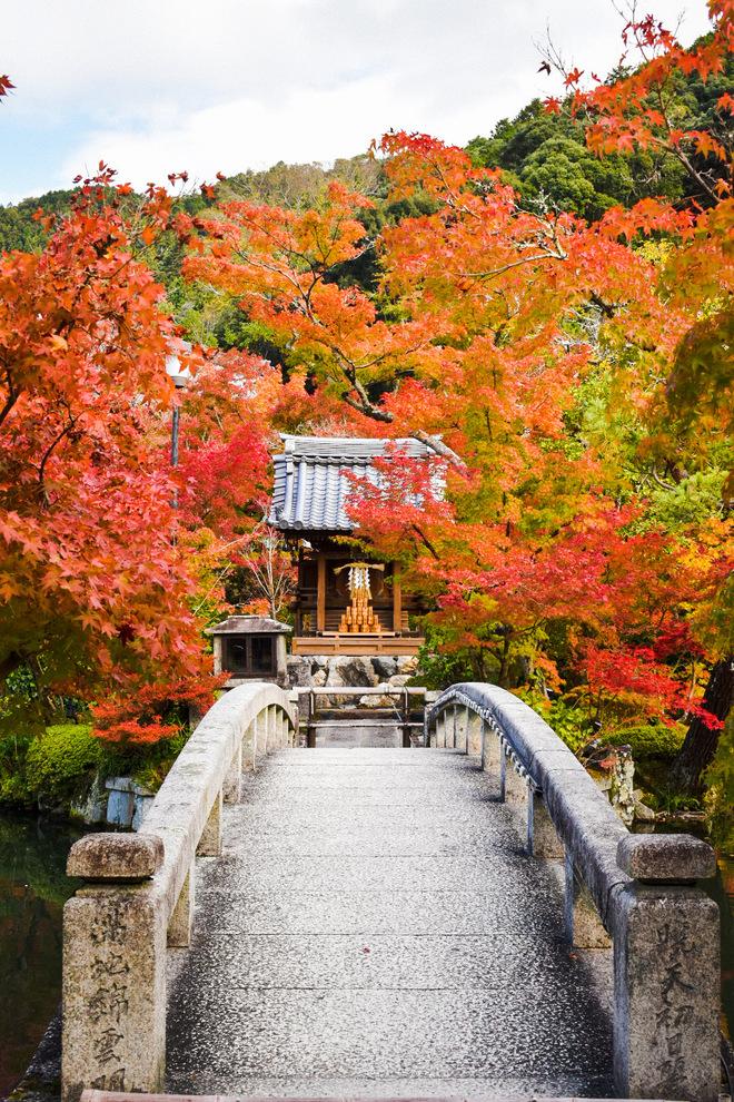 永観堂の見どころ_秋の紅葉と放生池_弁財天