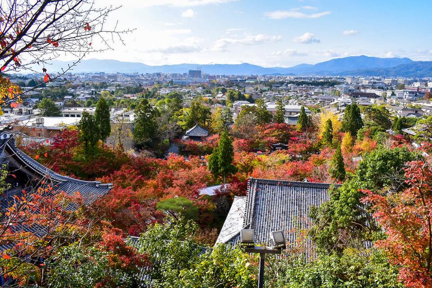 永観堂の見どころ_秋の紅葉と風景