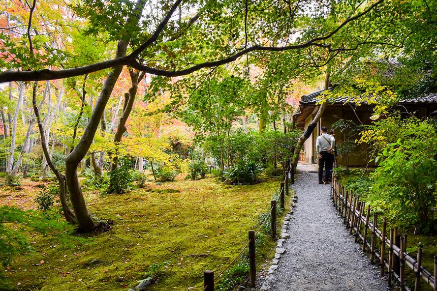祇王寺の物語_京都・嵐山の紅葉観光