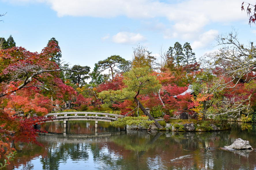 秋のもみじの永観堂_紅葉と放生池と極楽橋