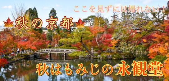 秋はもみじの永観堂_京都の紅葉観光