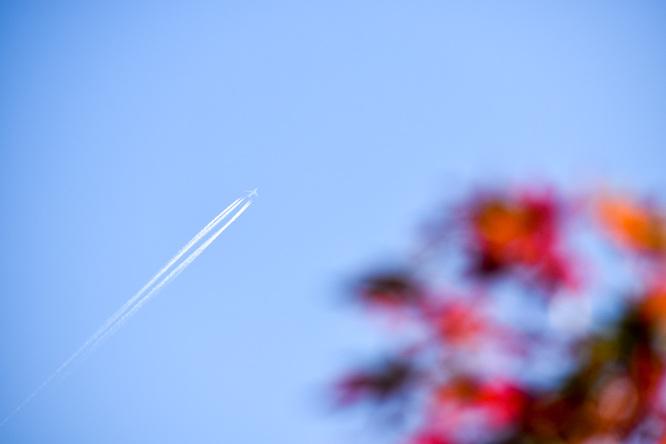 竹田城跡の見どころ_表米神社_紅葉と飛行機雲