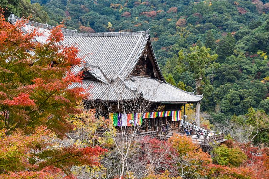 長谷寺・奈良の見どころ_本堂と懸造りと紅葉